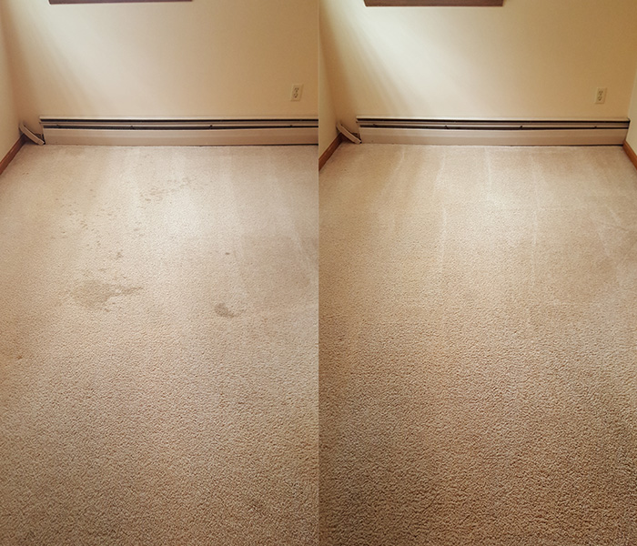 carpet-cleaning-images-1