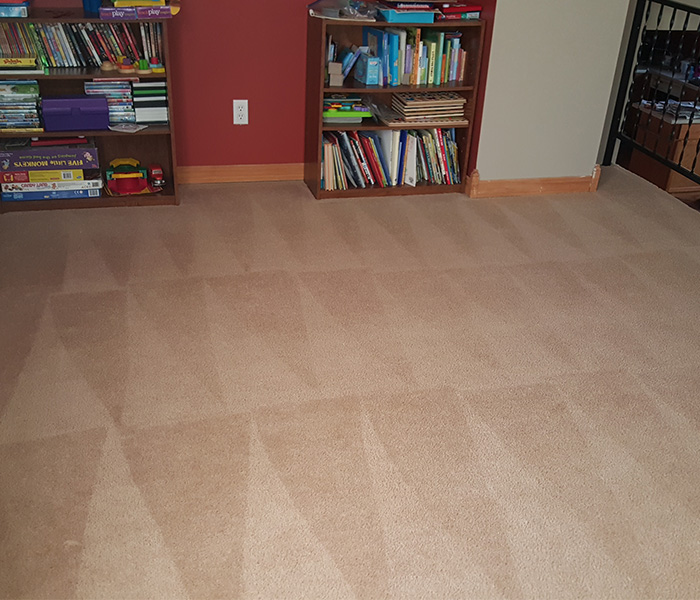 carpet-cleaning-images-3